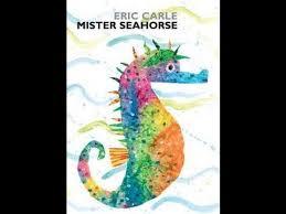 Mr.seahorse